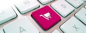 buy ecommerce website