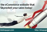 ecommerce website sales